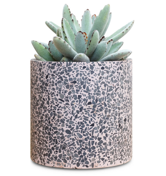2020 New Terrazzo Planter - certainly enhance your houseplant's style.
