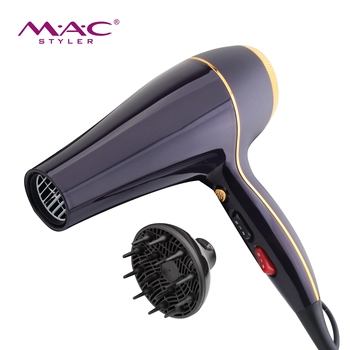 2019 Hot Sale Professional Hooded Hair Dryer High Quality Fashion Electric AC Motor Purple Hair Blow Dryer Wholesale