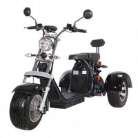 60V Big Size 2 Wheels Electrical Motorcycle Mobility Scooter For Adults Cool Ebike