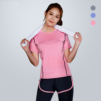 Female Yoga Top Wholesale Running Wear Sportswear Women Suit Quick Dry Seamless Plain T Shirts