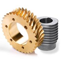 High precision custom machining steel alloy dc motor crown worm and wheel gear