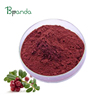 Hot Sale Product Cranberry Extract Powder