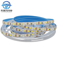 Shenzhen factory led strip lights 100m 5m/roll flexible DC 12V 24V 2835 120 led strip light light led Flex LED Strips