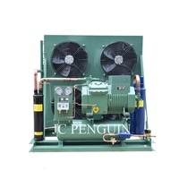 5hp 8hp 10hp 12hp 15hp Hot Sale Refrigeration Unit Air Cooled Open Type Bitzer Condensing Unit For Cold Storage Room