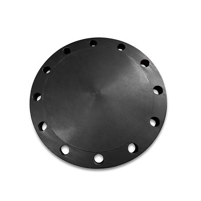 Forged Carbon Steel a105n Pipe Blind Flange