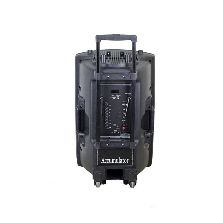 18-Inch subwoofer amplified portable party speaker with rechargeable battery - idealSpeaker.net