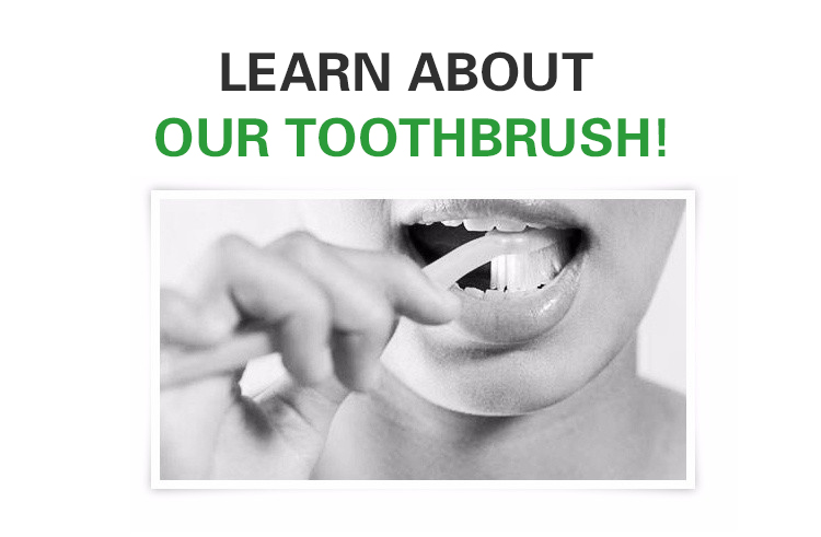 2019 popular top quality eco friendly toothbrush