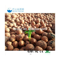 grow media 8-12mm best selling size clay pebbles expanded clay