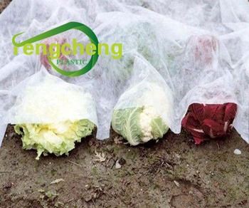 100% PP Nonwoven Agriculture Protecting Fabric for Winter/ Frost Protection