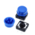Tactile Push Button Switch Momentary 12*12*7.3MM Micro Switch Button + Colors Tactile Cap
