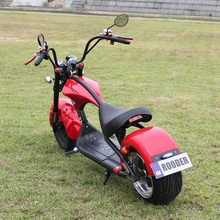 2020 Rooder r804-m1 Europe stock holland warehouse CE EEC COC 2000w 3000w citycoco chopper scooter electric motorcycles
