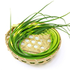 /product-detail/green-fresh-vegetable-garlic-sprouts-natural-garlic-1600062176727.html