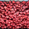 Frozen Iqf Strawberry Fruit Price