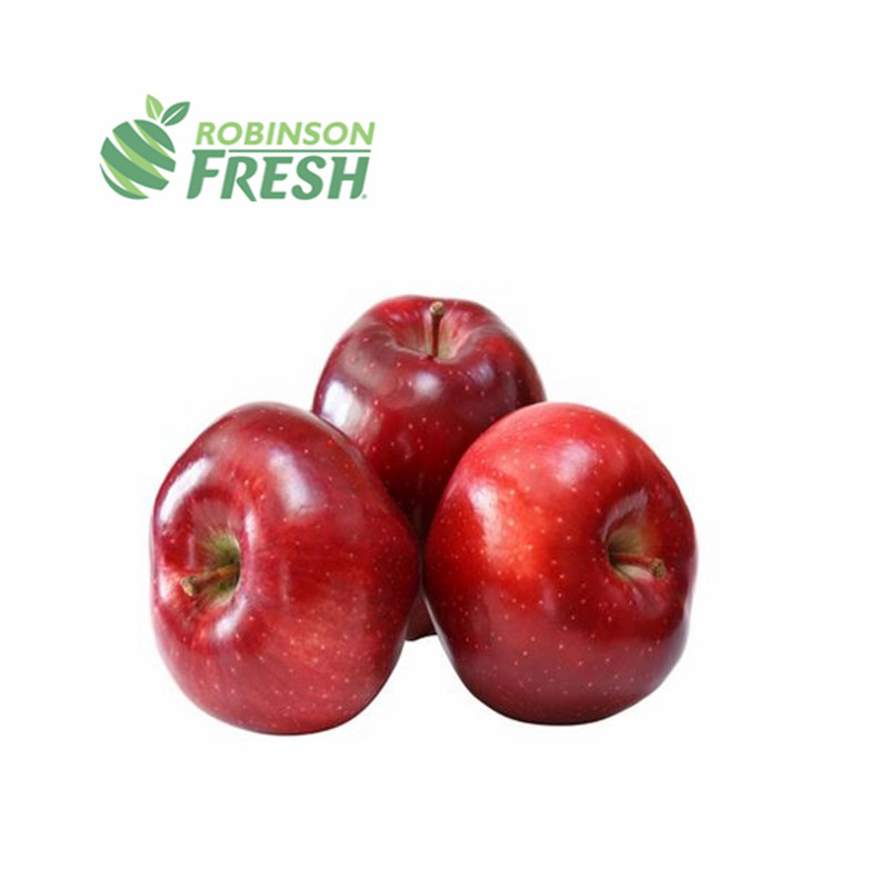 US Grown <strong>Apple</strong> Red DELICIOUS Fruit <strong>Apple</strong> Robinson Fresh MOQ 8x 5 lbs Quick Delivery in US