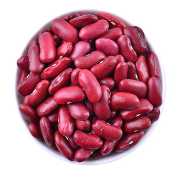 Dry and Fresh Red Kidney Beans / Fresh Quality Kidney Red Beans In Austria