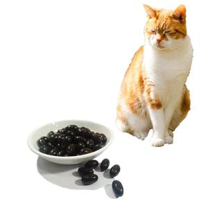 Lecithin Pet Supplements Private Label For Cats