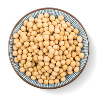 Wholesale Factory Soybean at cheap price!