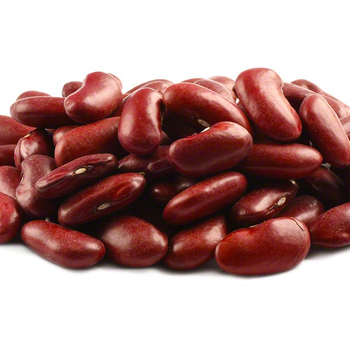 High Quality Bulk Dried Red Kidney Beans for Sale