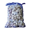/product-detail/fresh-white-garlic-natural-garlic-wholesale-price-62005323363.html