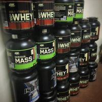 Best Isolate Whey Protein Isolate