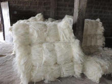 Other Fiber Product Type and Quality UG and SSUG Natural Raw Sisal Fiber / Sisal Fibre from China