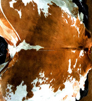 Traditional Cowhide Rugs from Brazil - Luxury Material - 100% Natural Cow hide - True Leather