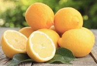 Best Quality Lemon in Egypt