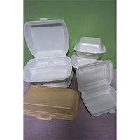 Polystyrene Foam (PS) Food / Burger Box