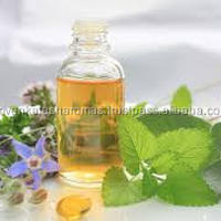 LOW PRICE Wild Oregano Oil Origanum