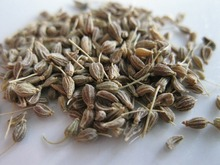 100% Pure Natural Star Anise/Aniseed seeds / star anise oil