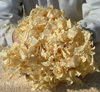 PINE WOOD SHAVINGS, origin Viet Nam,