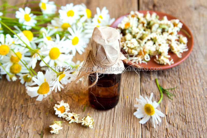 100% Pure Blue Chamomile Essential Oil