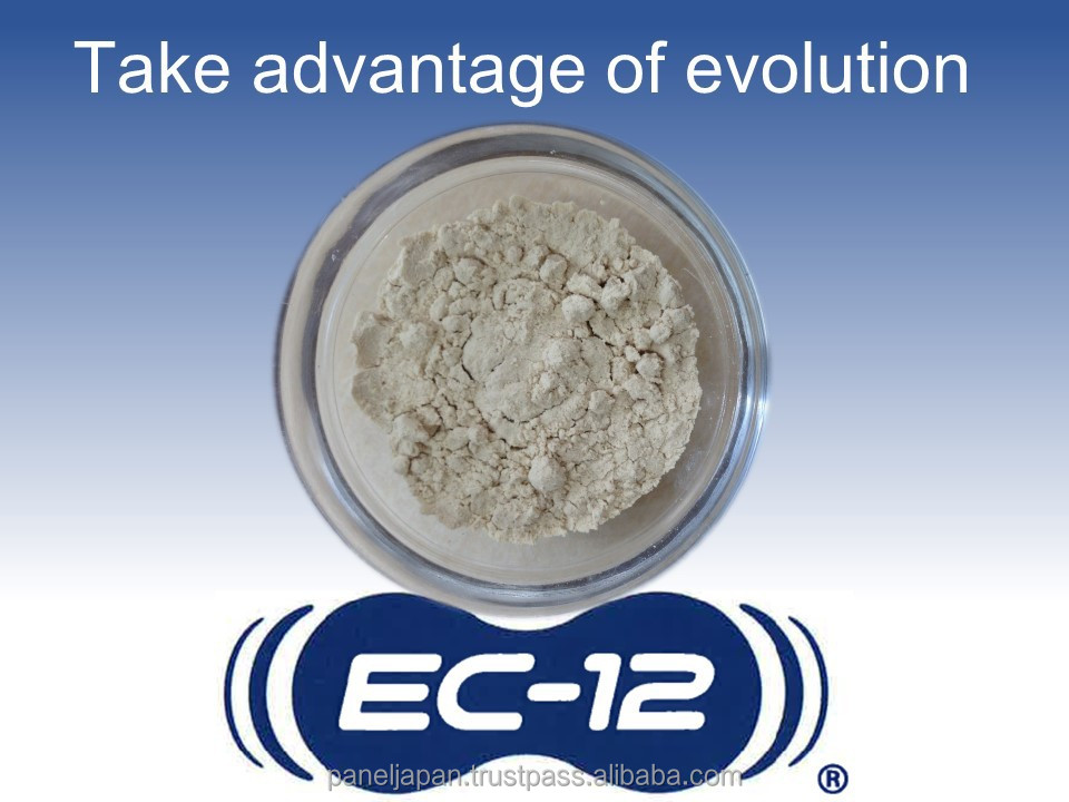 Japanese Lactic Acid Bacteria EC-12 For Health Foods For Enhancing Immunity, Anti-tumor, Improvement of Hepatitis C