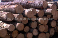 Eucalyptus Wood Logs and Keruing wood logs for sale.....