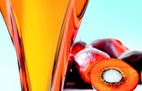 Refined and Crude Palm Oil at best price top quality