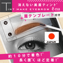 Tint make eyebrow-Cost-effective and Easy to use Fashionable Tint make eyebrow for daily use made in Japan-