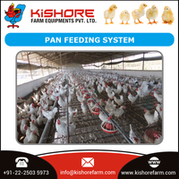 Automatic Broiler Pan Feeding System for Chickens at Cheap Price