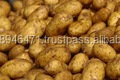 GRADE A Fresh Bulky potatoes FOR SALE