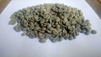 Flores Bajawa Green Bean Coffee Indonesia Specialty GR1 Semiwashed
