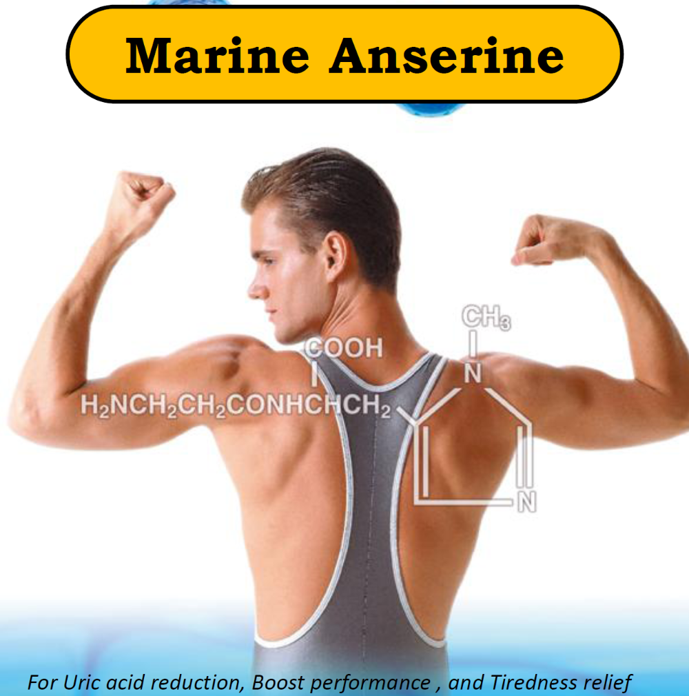 Japanese High Quality Marine Anserine Raw Material Powder Made In Japan For Health Foods