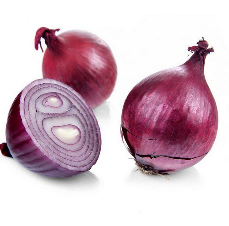 Honson Ingredient:Quercetin 100% Natural Onion Seed Extract