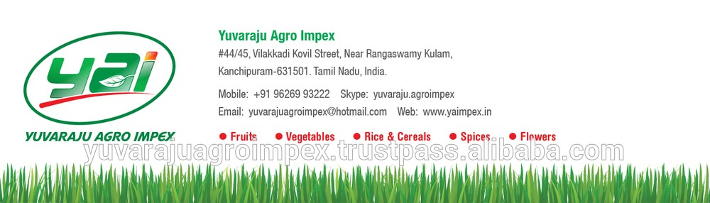 Best Packing & cleaning for Seeraga Samba Rice Suppliers