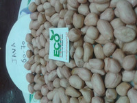 peanut manufacturer/java/bold with all size 40/50, 50/60,60/70,70/80,80/90.