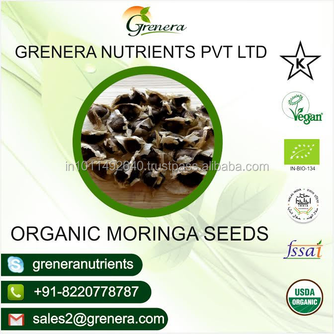 Moringa Seeds With Certification Of GMP,ISO,HACCP Approved