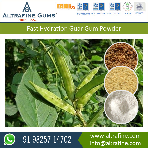 Good Thermal Stability and Shelf Life Fast Hydrating Guar Gum Powder