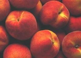 Buy fresh peach from South Africa