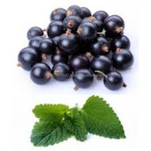 good quality black currant emulsion flavor