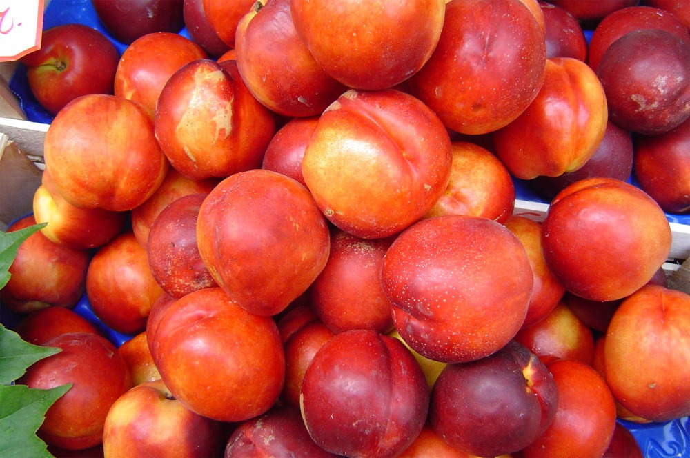 Nectarine BEST QUALITY