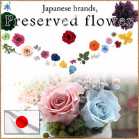 Fashionable and Beautiful sell high quality artificial flower wholesale preserved for flower arrangement