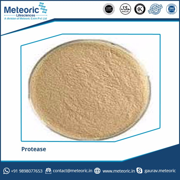 Wholesale Supplier of Water Soluble Protease Enzyme at Competitive Market Price